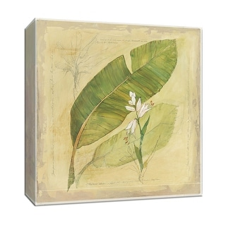 "PTM Images 9-153260  PTM Canvas Collection 12"" x 12"" - ""Botanical Study I"" Giclee Leaves Art Print on Canvas"