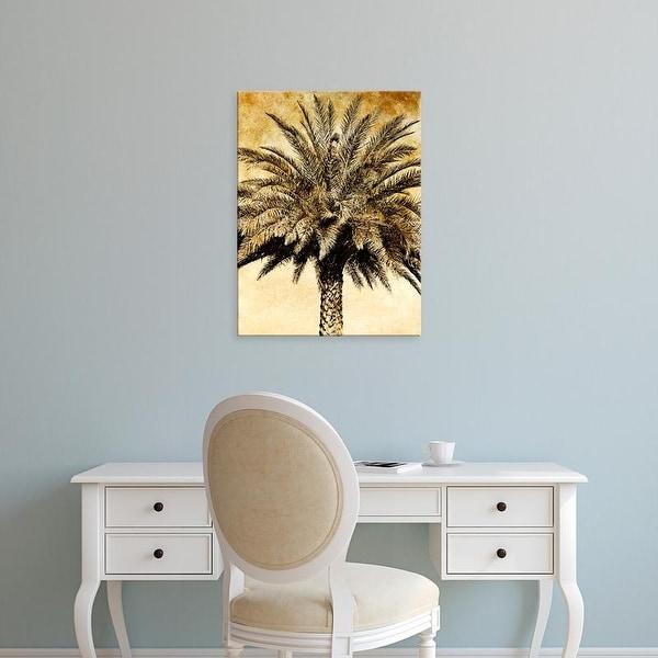 Easy Art Prints Skip Nall's 'Palms on Brown V' Premium Canvas Art