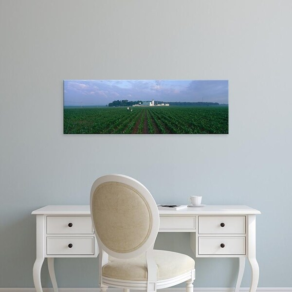Easy Art Prints Panoramic Images's 'USA, Illinois, Kane County, corn' Premium Canvas Art
