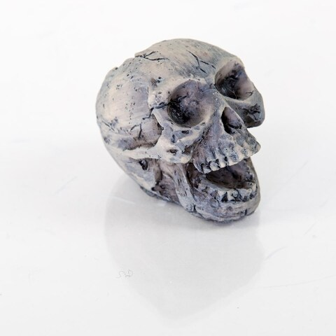 "BioBubble Decorative Human Skull Small 2"" x 1"" x 2"""