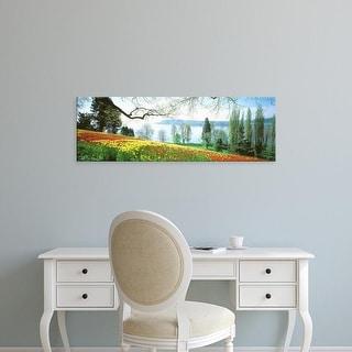 Easy Art Prints Panoramic Images's 'Lake Constance, Insel Mainau, Germany' Premium Canvas Art