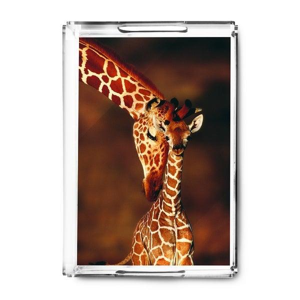 Giraffe & Baby - Lantern Press Photography (Acrylic Serving Tray)