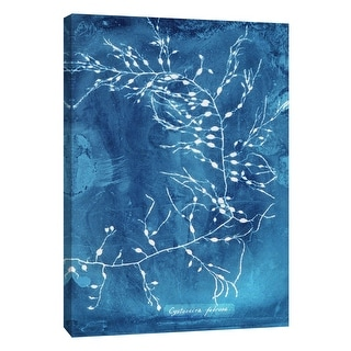 """PTM Images 9-105771  PTM Canvas Collection 10"""" x 8"""" - """"Natural Forms Blue 2"""" Giclee Seaweed Art Print on Canvas"""