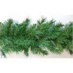 "- Sugar Pine Garland 200 Tips; 12""X9'"