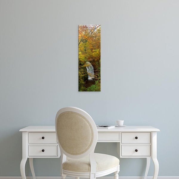 Easy Art Prints Panoramic Images's 'Waterfall In A Forest, Falling Foss, Whitby, England, United Kingdom' Canvas Art