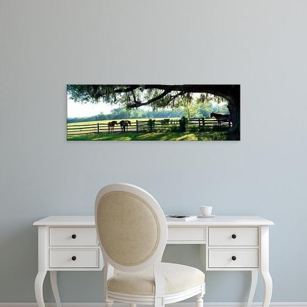 Easy Art Prints Panoramic Image 'Horses in a ranch, Hobeau Farms Barn, Ocala, Marion County, Florida, USA' Canvas Art