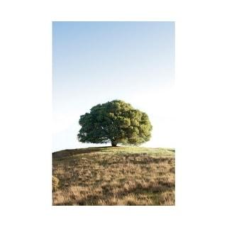 Easy Art Prints Alan Blaustein's 'Oak Tree #77' Premium Canvas Art