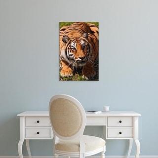 Easy Art Prints Adam Jones's 'Bengal Tiger' Premium Canvas Art