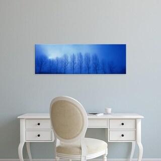 Easy Art Prints Panoramic Images's 'Trees in Fog Damme Belgium' Premium Canvas Art