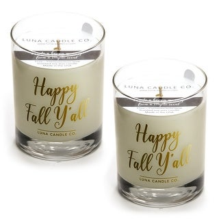 Mulled Cider Scented , Premium Soy Candle Handcrafted, USA (2 Pack)