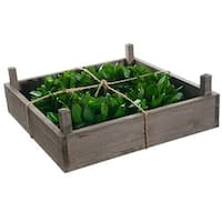 "14"" Green Bay Leaf Artificial Spring Wreath in Rustic Wood Frame Box"