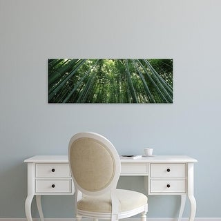 Easy Art Prints Panoramic Image 'bamboo trees, Arashiyama, Kyoto Prefecture, Kinki Region, Honshu, Japan' Canvas Art