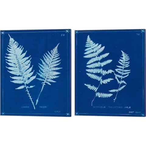Unknown 'Cyanotype Ferns B' Canvas Art (Set of 2)