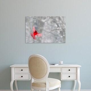 Easy Art Prints Jaynes Gallery's 'A Male Cardinal' Premium Canvas Art