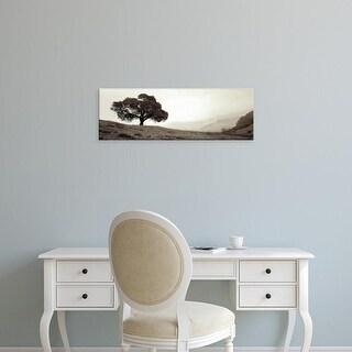 Easy Art Prints Alan Blaustein's 'Black Oak #1' Premium Canvas Art