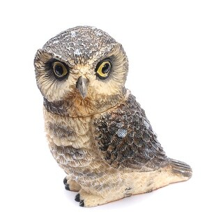 Owl Pot Bellys Box - Hawk Owl