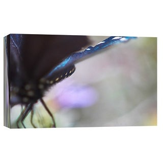 "PTM Images 9-101878  PTM Canvas Collection 8"" x 10"" - ""Butterfly Az 3"" Giclee Butterflies Art Print on Canvas"