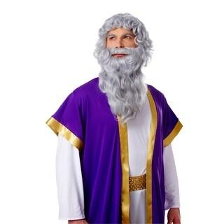 Deluxe Biblical Long Gray Moses Wig & Beard