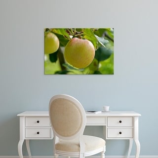 Easy Art Prints Paul Thompson's 'James Grieve Eating Apple Tree In Garden' Premium Canvas Art