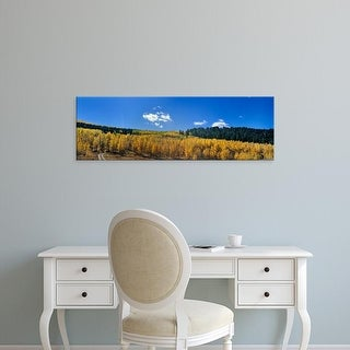 Easy Art Prints Panoramic Images's 'Trees on a landscape, Colorado, USA' Premium Canvas Art