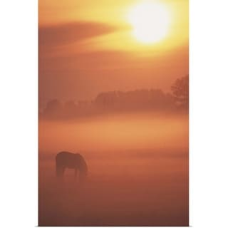 """""""horse in pasture"""" Poster Print"""
