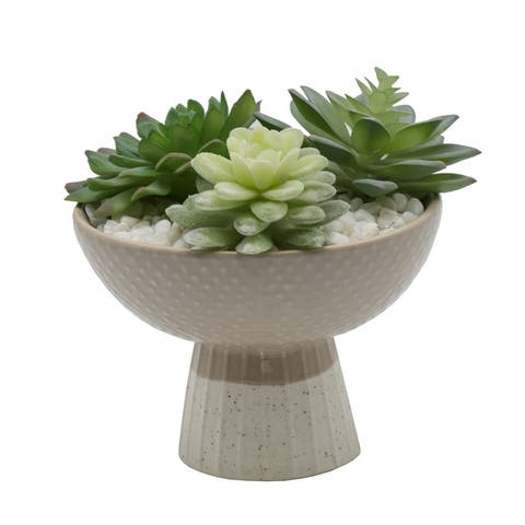 Artificial Plant Succulent Mix in Two Tone Bowl Ceramic Planter - ONE-SIZE