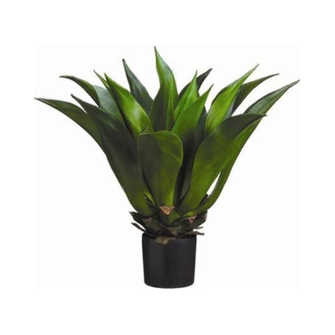 Allstate Floral LPA616-GR 33 in. Giant Mexican Agave in Plastic Pot Green
