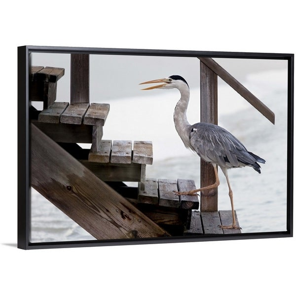 """""""With A Firm Step"""" Black Float Frame Canvas Art"""