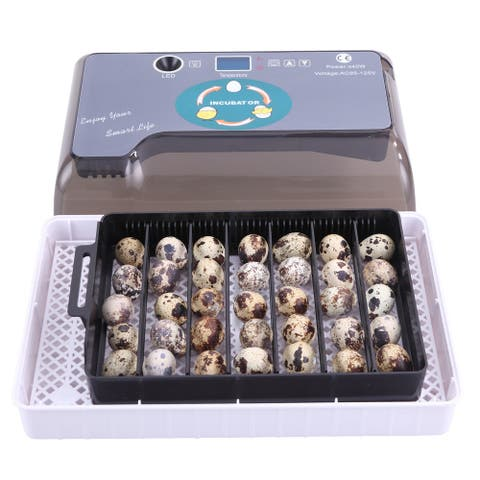 12-Egg Adjustable Egg Tray Practical Fully Automatic Poultry Incubator
