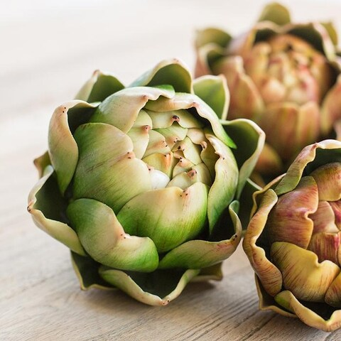G Home Collection Rustic Artificial Real Touch Artichoke Randomly Picked Set of 3