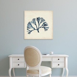 Easy Art Prints Naomi McCavitt's 'Seaweed Specimens XI' Premium Canvas Art