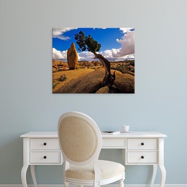 Easy Art Prints Chuck Haney's 'Balanced Rock & Juniper' Premium Canvas Art