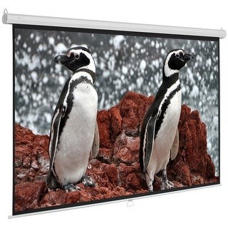 """Onebigoutlet Manual Pull Down Auto-Lock Projector HD Moive Screen White 96""""x72"""", 120"""" 4:3"""