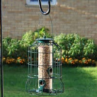 Sunnydaze 10 Inch Green 4 Peg Squirrel Proof Wild Bird Feeder