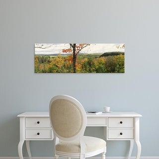 Easy Art Prints Panoramic Images's 'Penokee overlook Chequamegon National Forest, Wisconsin, USA' Premium Canvas Art