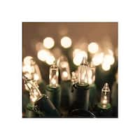 """Wintergreen Lighting 15182 13.3' Long Indoor Standard 35 Mini Light Holiday Light Strand with 4"""" Spacing and White Wire"""