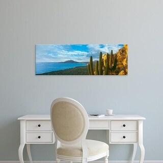Easy Art Prints Panoramic Image 'Pitaya cactus, Cabo Pulmo Marine Park, Baja California Sur, Mexico' Canvas Art