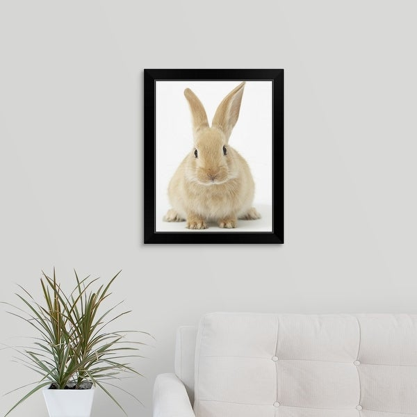 """Beige bunny rabbit"" Black Framed Print"