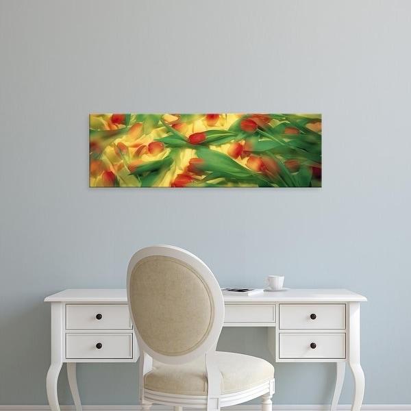 Easy Art Prints Panoramic Images's 'Red Tulips' Premium Canvas Art
