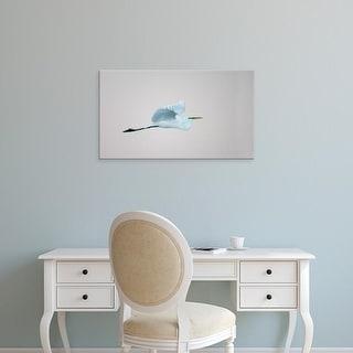 Easy Art Prints Jaynes Gallery's 'Flying Great Egret' Premium Canvas Art