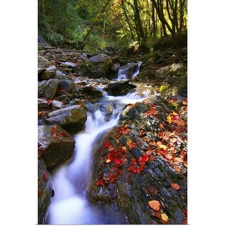 """""""Maple leaves and stream"""" Poster Print"""