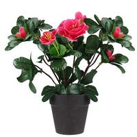 "8"" Artificial Hot Pink Rose with Dark Coffee Brown Pot"