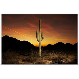 """""""Saguaro cactus at sunset"""" Poster Print"""