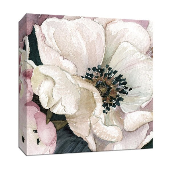 "PTM Images 9-147774 PTM Canvas Collection 12"" x 12"" - ""Anemone Study III"" Giclee Flowers Art Print on Canvas"
