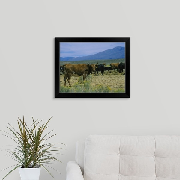"""""""Herd of cattle in a field, Taos, Taos County, New Mexico"""" Black Framed Print"""