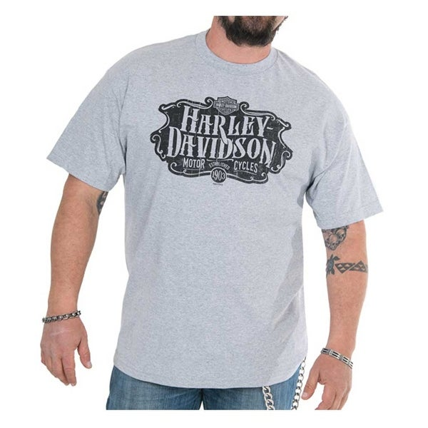 Deep Heather Harley-Davidson Men/'s Find Freedom Short Sleeve Classic T-Shirt