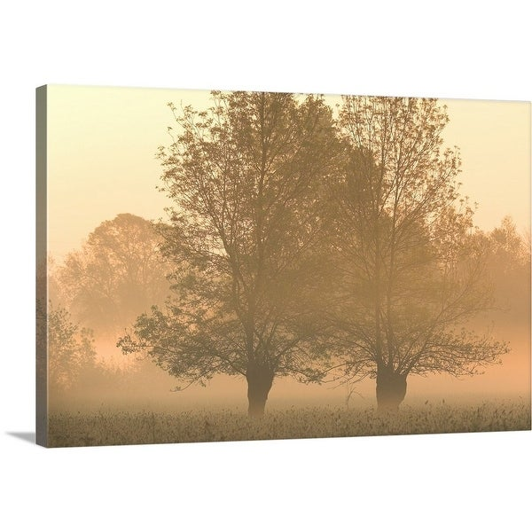 Shop Premium Thick Wrap Canvas Entitled Willow Trees In