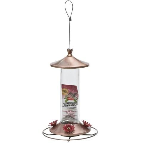 Perky-Pet 710B Elegant Copper Glass Hummingbird Feeder with Free Nectar