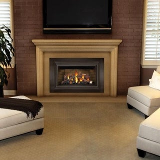 Napoleon GDIZC-SB 24000 BTU Insert Direct Vent Natural Gas Fireplace with Safety Barrier and Millivolt Ignition from the - N/A