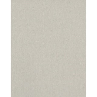 "Bazzill Card Shoppe Heavyweight Cardstock 8.5""X11""-Alpaca"